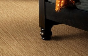Shaw Carpet In Denver Low Price Amp Great Installation